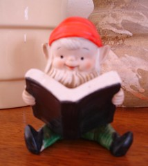 little reading gnome