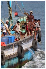 On board 2 (Gurugo) Tags: sea people india port lafotodelasemana boat mar fishing pessoas barco fishermen board goa pesca entering panjim pescadores lfsjornadalaboral