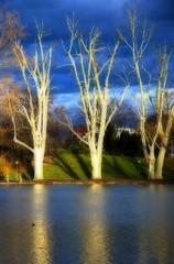 Sunburst (Orton) (Al Fed) Tags: sky lake reflection tree colors clouds dark stuttgart sunburst orton abigfave