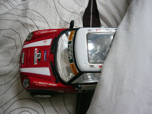 Car in bed