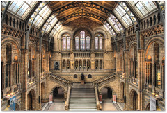 Symmetry (Robert Silverwood) Tags: building london beautiful museum architecture stairs wow wonder perfect victorian darwin symmetry naturalhistorymuseum hdr waterhouse photomatix splendiferous bachspicsgallery theartlair