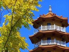 Nan Tien Temple (Thiru Murugan) Tags: beautiful yellow wonderful landscape temple pagoda shrine buddha peaceful tibet nsw excellent nan wollongong tien murugan thiru thirumurugan impressedbeauty treatmephotos thiruflickr