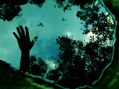i had a dream... (zenog) Tags: azul turquoise poesia mão ezrapound artlibre iwannatouch