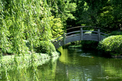 Japanese Gardens (Melissa_A) Tags: bridge trees moon nature water gardens d50 japanese nikon willow relflection moonbridge melissaa mywinners impressedbeauty favoritegarden travelerphotos