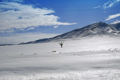 (Beshef) Tags: snow tree iran shahram specnature shahramsharif