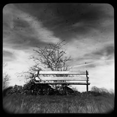 Bench (noiseburst) Tags: uk england blackandwhite bw white black monochrome bench bristol blackwhite nikon kodak d100 2007 ttv duaflex2