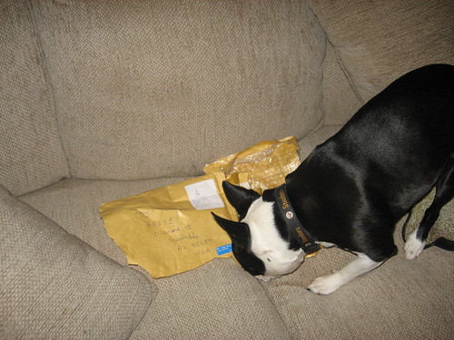 what is in here??
