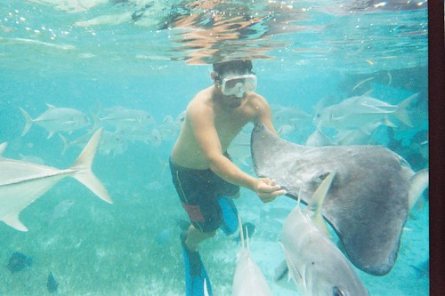 Snorkeling at Sting Ray Alley, Belize