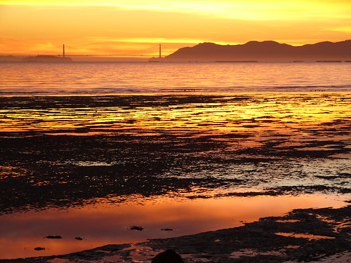 sunset mud flats