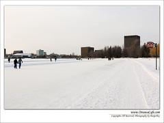 Dows Lake  in Winter 1 (Ottawa Burgerboy) Tags: rink longest the