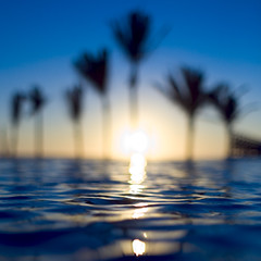 Sunset (Luis Montemayor) Tags: blue sunset sun reflection sol azul palms mexico atardecer nice searchthebest palmeras swimmingpool reflejo acapulco alberca