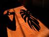 Talking to plants (Mark Rutter) Tags: shadow selfportrait all l3 cheeseplant i120 echoedform babycamera markrutter