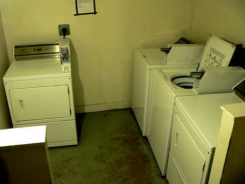 The Laundry Room Run-In — Elan Morgan