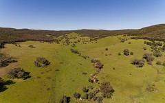 2154 Kangarooby Road, Gooloogong NSW