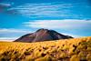 Cerro Miscanti (josefrancisco.salgado) Tags: 70200mmf28gvrii atacamadesert cerromiscanti chile d810a desiertodeatacama iiregióndeantofagasta nikkor nikon provinciadeelloa reservanacionallosflamencos desert desierto flora montaña mountain pajabrava volcano volcán socaire cl