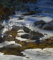 Goose Creek ~ December