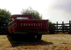 Dated (sailingaway719) Tags: chevrolet oregon truck farm mckilloproad scottsmills