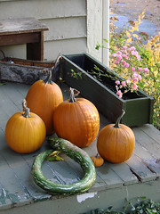 Porch Pumpkin Still Life (cjngraph) Tags: flowers autumn halloween pumpkin clinton gourd porch