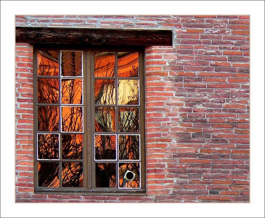 Reflets de briques/ bricks & window