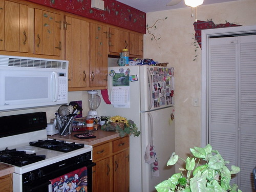 My Kitchen - East wall