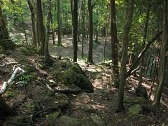 Kelso Hiking Sept 06 269 (travellingzenwolf) Tags: hiking kelso escarpment zenwolf