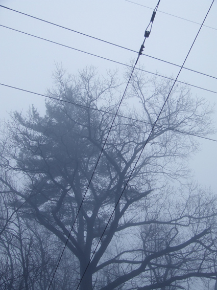 fog wires