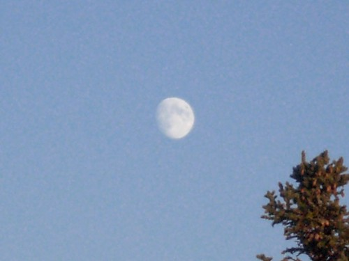 Full moon during daylight hours