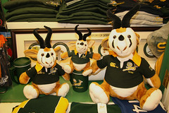 Teddybok runs into some 'friends' for sale at the Springbok store in the Waterfront (Dave Reinhardt) Tags: southafrica capetown springboks teddybok satrip06