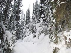 Banff, Canada (December 2006) 084 (gloria_euyoque) Tags: canada 2006 banff december2006