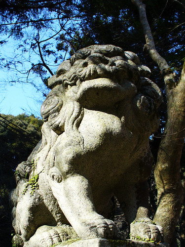 Paddock Café :: 狛犬 吽形(Komainu) 獅子 :  guard at the temple gate to see that nothing evil enters