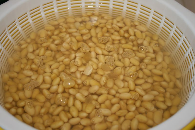 Soaked soy beans