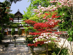Tenryu-ji (john weiss) Tags: topv111 japan geotagged kyoto shrine unesco worldheritagesite arashiyama tenryu jw1066 favoritegarden geo:lat=35015523 geo:lon=135676217 travelerphotos virtualjourney virtualjourneygallery