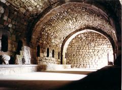 Selim Caravanserai (mm-j) Tags: 2001 may scan contax armenia t2 caravanserai sisian martuni