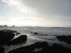DSC02924 (brienw) Tags: california beach bay surf break wave surfing halfmoonbay swell mavericks halfmoon surfspot bigwave