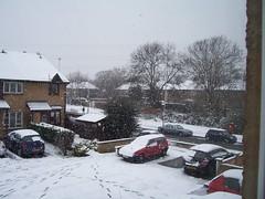 Snow near our house