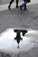bastille (Sebleica) Tags: portrait paris fix pose pluie reflet lumiere bastille couleur insolite passant focal cadrage jeuxdelumiere