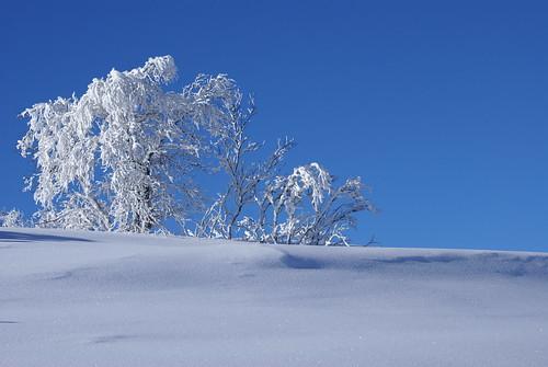 Etter snøfall