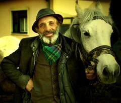 Gypsy, Serbia (Aleksandra Radonic) Tags: poverty life street old portrait people horse man face iron serbia photojournalism social nomad balkans capitalism emotions gypsy wander