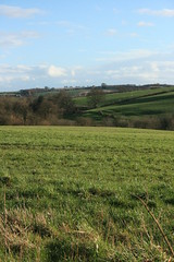 IMG_0907 (Photos by Jus) Tags: nature fields highley impressedbeauty impressedbyyourbeauty