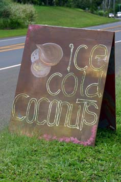 ice cold coconuts