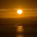 Sunrise over Fredrikstad