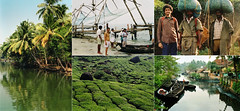 2003 February - Kerala, India (Emma Camden) Tags: india kerala backwaters teaplantation fortcochin