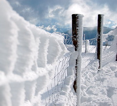 First snow (Vermario) Tags: winter snow ice beauty fence germany bravo top20winter creativecommons neige photooftheday magicdonkey instantfave impressedbeauty 10jan2007
