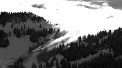 fog bw (adlin) Tags: schnee mountain snow alps cold fog geotagged schweiz switzerland nebel luzern kalt lucerne rigi 123bw spseeingthelight