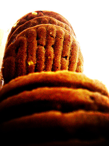 "Cookie G""day lomo"