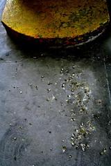 Omaha Detritus  06 139.JPG (Cyclops Optic) Tags: street omaha wnwthebirds