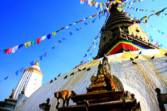 qIMG_2248 (Sam's Exotic Travels) Tags: nepal temple monkey sam stupa buddhist kathmandu sams travelphotos swayambhunath samsays samsexotictravelphotos exotictravelphotos samsayscom