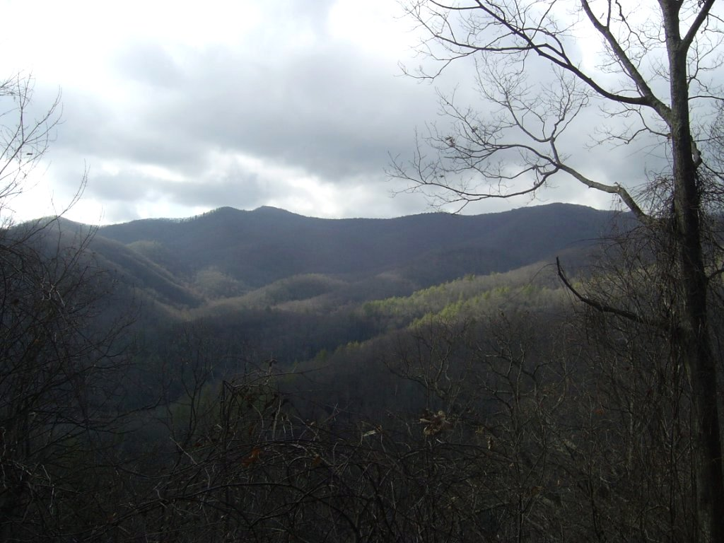 Coldspring Mountain
