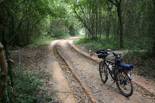 Exciting jungle cycling in cat Tien N.P.