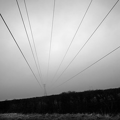 Aust Pylon (Adam Clutterbuck) Tags: uk greatbritain blackandwhite bw mist 20d monochrome misty wales bristol square landscape mono blackwhite power canoneos20d bn minimal severn riversevern pylon powerlines elements gb electricity bandw simple raining sq oe sweeping aust distilled simplified southgloucestershire greengage electricitycables southglos adamclutterbuck sqbw bwsq bldypouring showinrecentset openedition